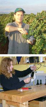 The World of Israeli Wines